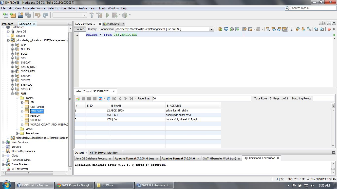 Row entered inside the table with the use of Hibernate