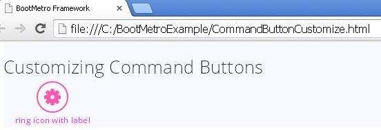 CommandButtonCustomizeExample.