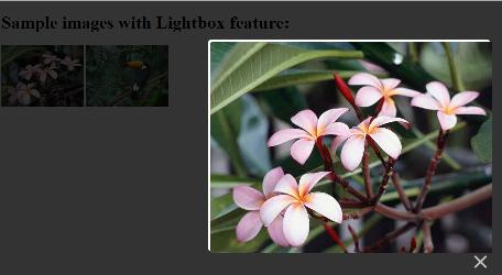Showing lightbox effect