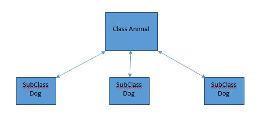 Class and Subclass